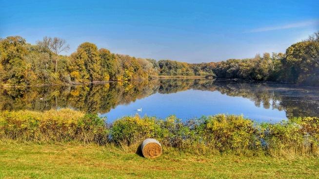 Tiszadobi Ártér Természetvédelmi Terület